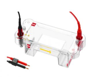 WIX-miniDNA Mini Horizontal Gel Electrophoresis System